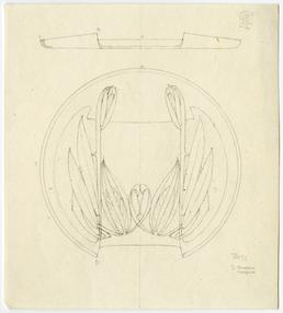 Liberty design for a tray by Archibald Knox