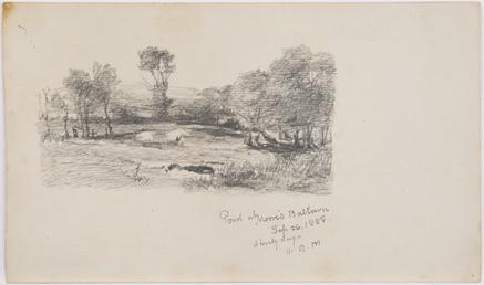 Pond at Moore's, Ballown
