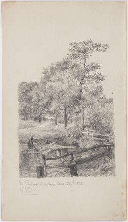In Pulrose Meadow