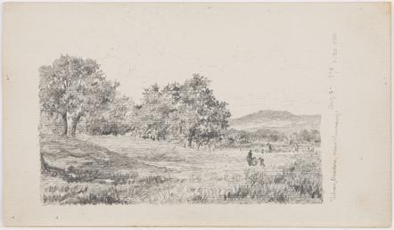 Pulrose Meadow, near Nunnery