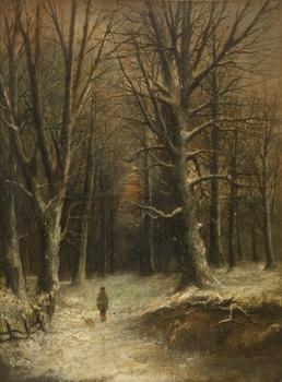 Snow scene in a forest
