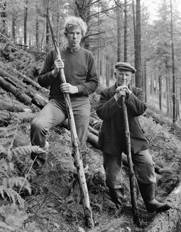 Forestry Board workers, Gob y Vullen