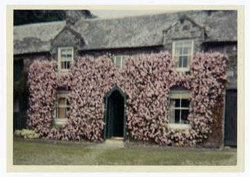Flower covered front of a house at Ballagawne,…