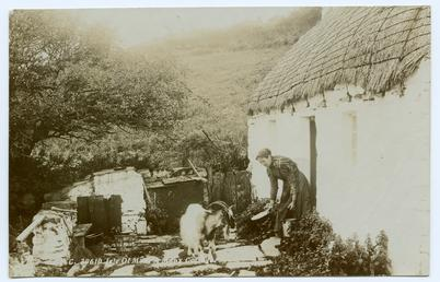 Woman feeding a goat outside a cottage at…