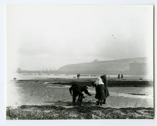Digging for bait on Douglas shore