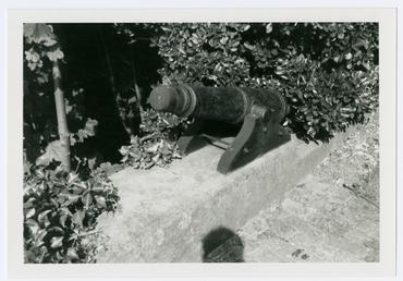 Small cannon dug up in a Douglas garden