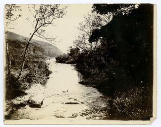 Cornaa river ?