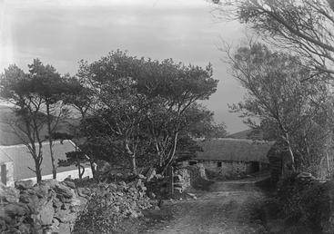 Track to stone outbuiliding andcottage, Isle of Man