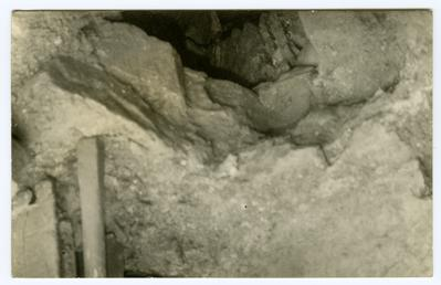 Cellar vault revealed by collapse of the floor…