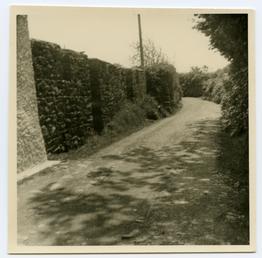 Rheast Lane Peel