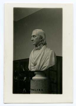 Bust of Edward Forbes