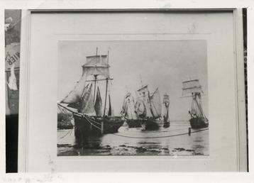 The schooners 'Progress', 'Jilt', 'Agnes Glover', 'Venus' and…