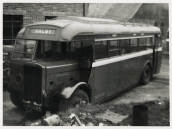 CMN 695 Leyland Lion bus LT9