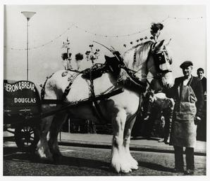James (Jimmy) Nelson with decorated horse 'Duke'