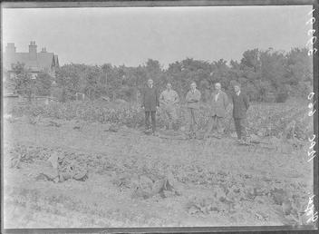 First World War Internees, Allotments, Douglas Camp, Isle…