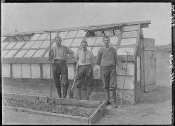 First World War Internees outside Greenhouses, Allotments, Knockaloe…